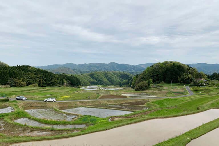 山王寺の棚田