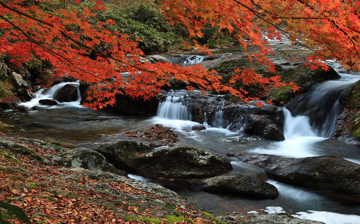 紅葉の八重滝